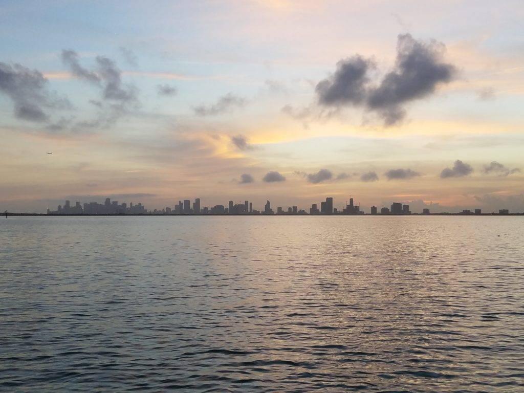 Downtown Miami Skyline View